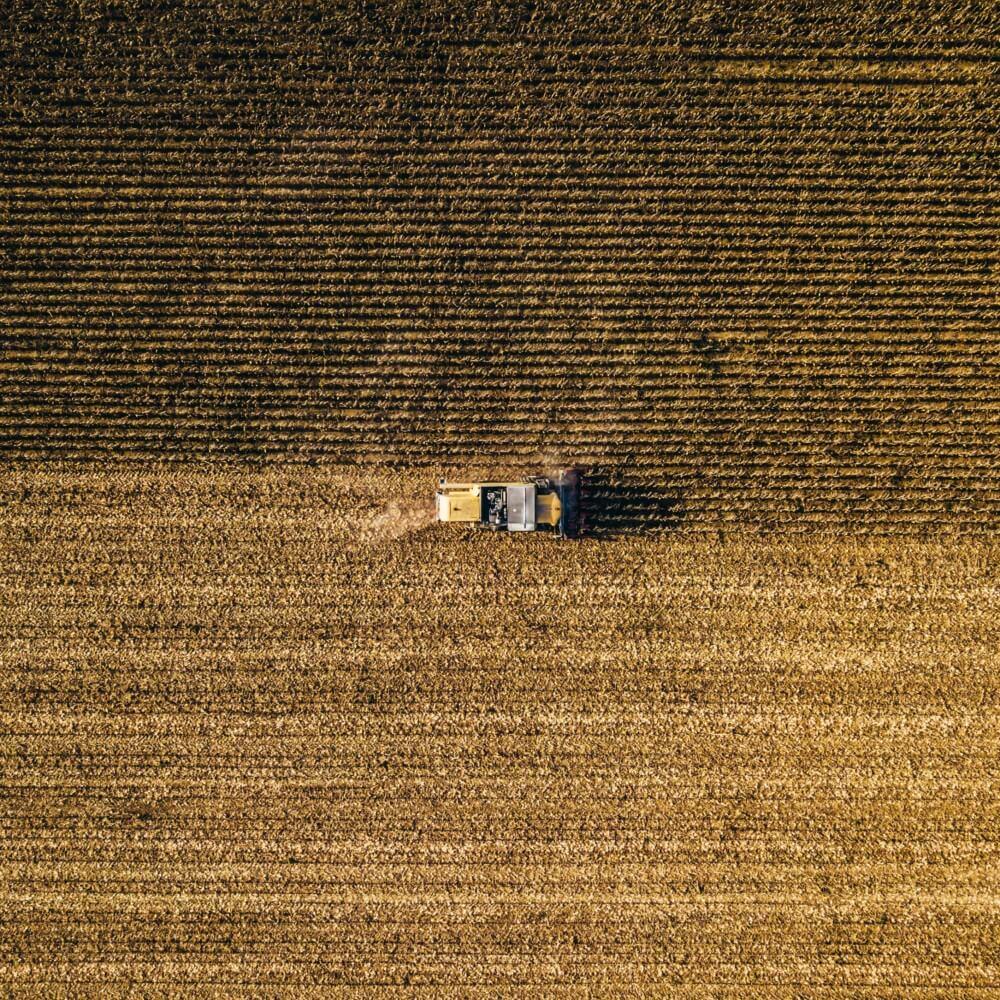 Farmer auf dem Feld