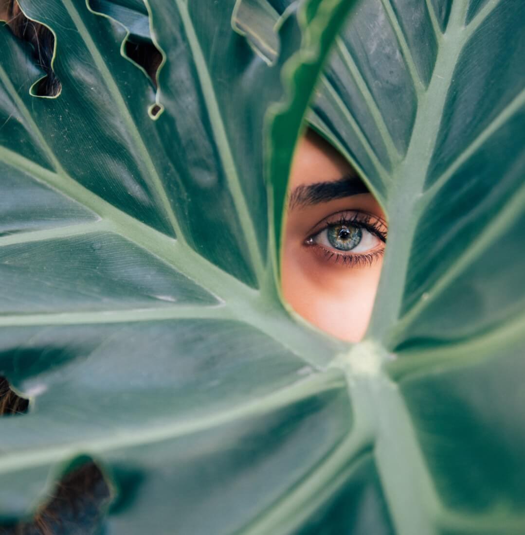 Auge hinter großen grünen Blättern